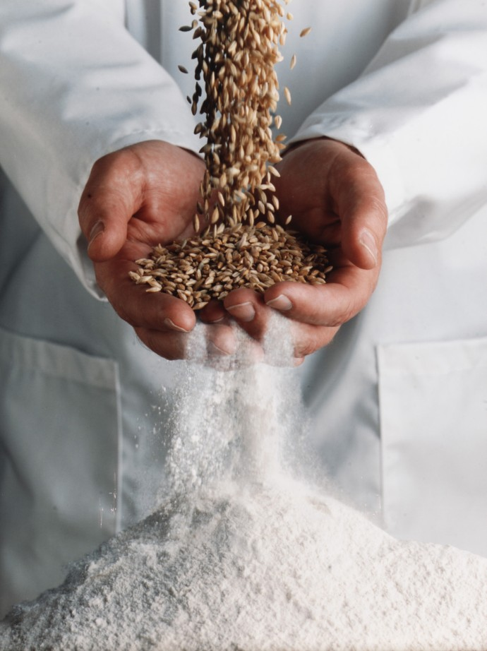 Chef holding powder and grains for cooking